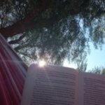 Entspannung auf Sardinien