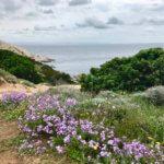 Blick aufs Meer Capo Testa